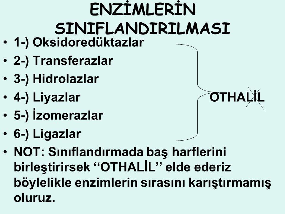 ENZİMLERİN SINIFLANDIRILMASI 1-) Oksidoredüktazlar 2-) Transferazlar 3-) Hidrolazlar 4-) Liyazlar OTHALİL 5-) İzomerazlar 6-) Ligazlar NOT: Sınıflandı