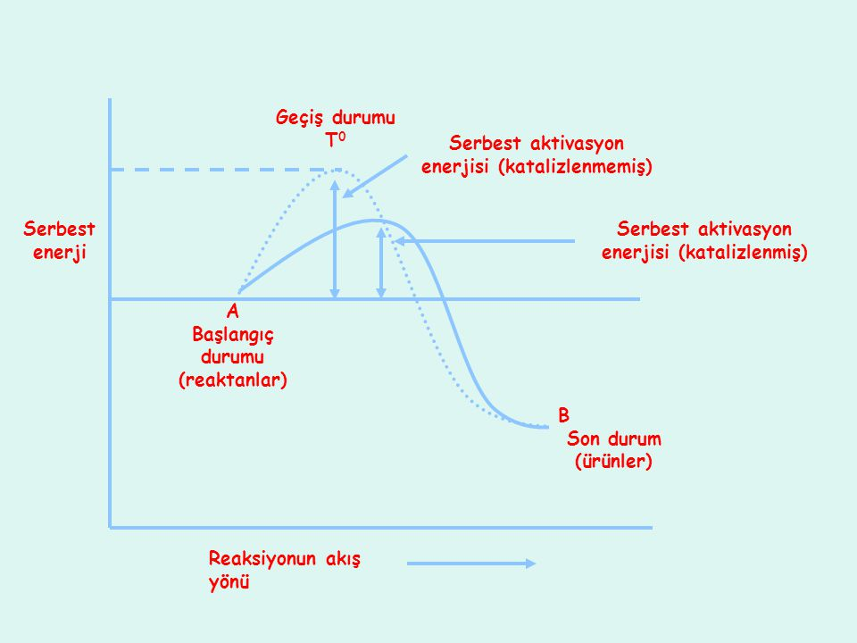Serbest aktivasyon enerjisi (katalizlenmiş) Geçiş durumu T 0 A Başlangıç durumu (reaktanlar) B Son durum (ürünler) Serbest aktivasyon enerjisi (katali