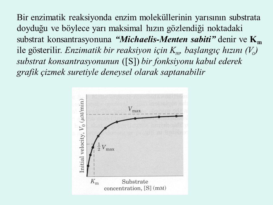 Bir enzimatik reaksiyonda enzim moleküllerinin yarısının substrata doyduğu ve böylece yarı maksimal hızın gözlendiği noktadaki substrat konsantrasyonu