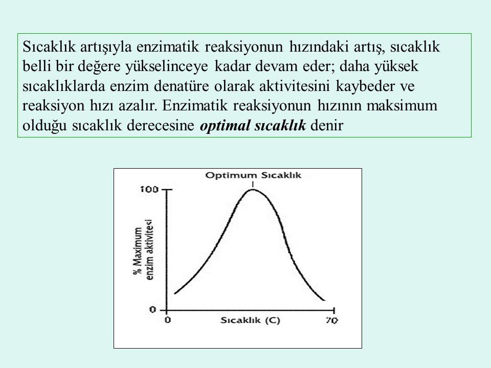 Sıcaklık artışıyla enzimatik reaksiyonun hızındaki artış, sıcaklık belli bir değere yükselinceye kadar devam eder; daha yüksek sıcaklıklarda enzim den