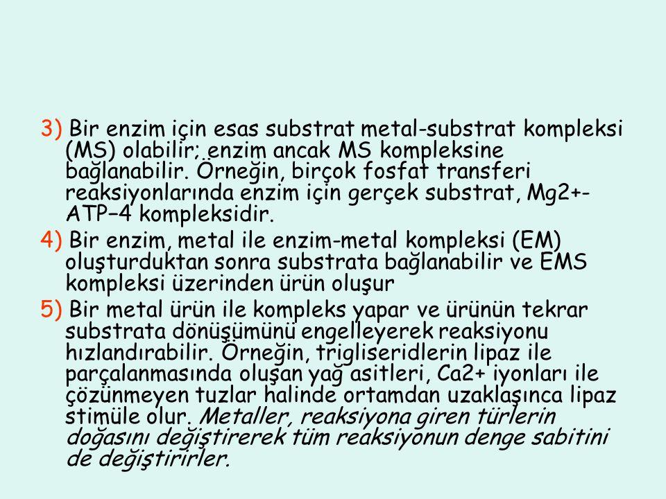 3) Bir enzim için esas substrat metal-substrat kompleksi (MS) olabilir; enzim ancak MS kompleksine bağlanabilir. Örneğin, birçok fosfat transferi reak