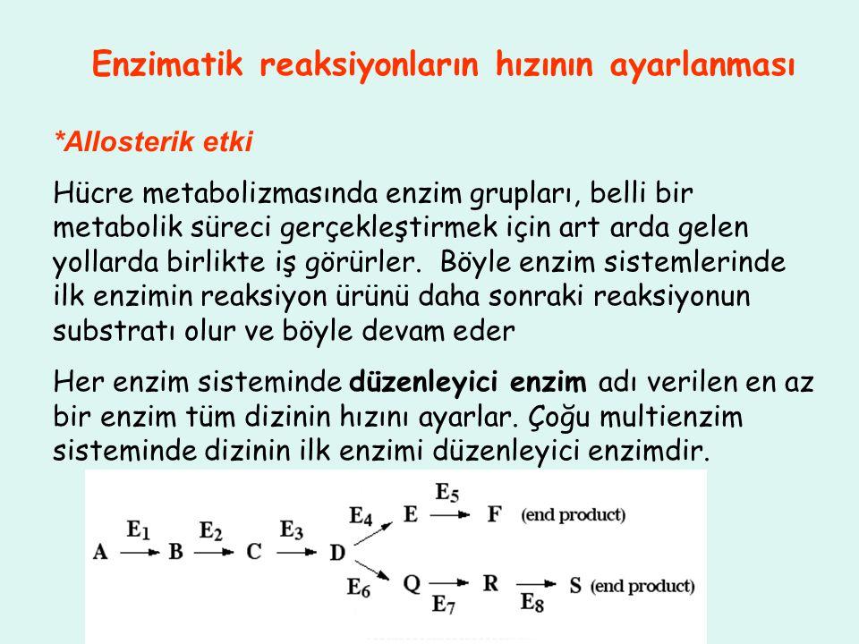 Enzimatik reaksiyonların hızının ayarlanması *Allosterik etki Hücre metabolizmasında enzim grupları, belli bir metabolik süreci gerçekleştirmek için a