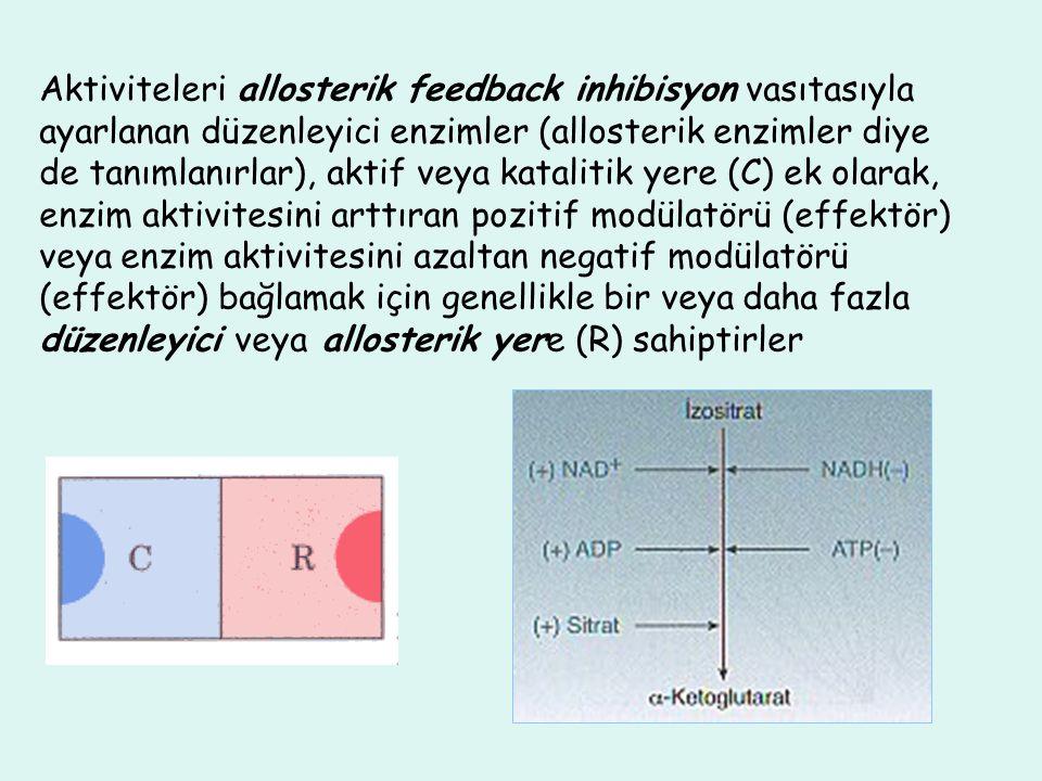 Aktiviteleri allosterik feedback inhibisyon vasıtasıyla ayarlanan düzenleyici enzimler (allosterik enzimler diye de tanımlanırlar), aktif veya katalit
