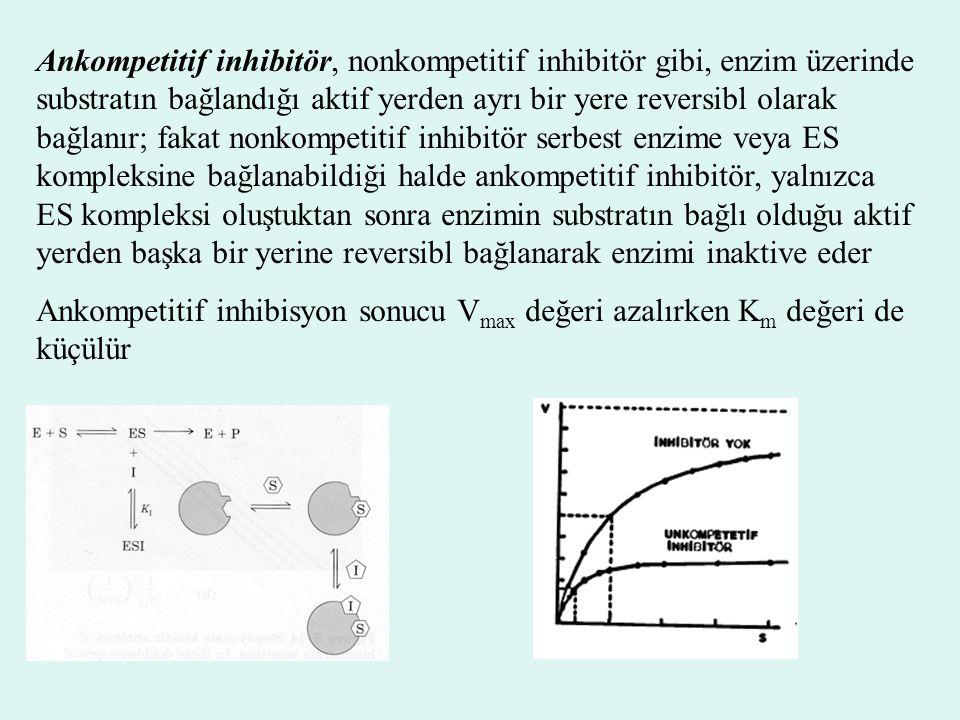 Ankompetitif inhibitör, nonkompetitif inhibitör gibi, enzim üzerinde substratın bağlandığı aktif yerden ayrı bir yere reversibl olarak bağlanır; fakat