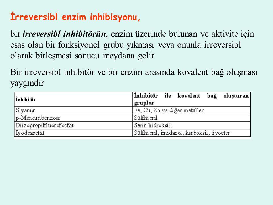 İrreversibl enzim inhibisyonu, bir irreversibl inhibitörün, enzim üzerinde bulunan ve aktivite için esas olan bir fonksiyonel grubu yıkması veya onunl