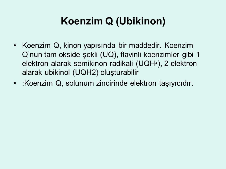 Koenzim Q (Ubikinon) Koenzim Q, kinon yapısında bir maddedir. Koenzim Q'nun tam okside şekli (UQ), flavinli koenzimler gibi 1 elektron alarak semikino