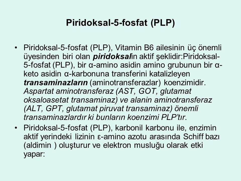Piridoksal-5-fosfat (PLP) Piridoksal-5-fosfat (PLP), Vitamin B6 ailesinin üç önemli üyesinden biri olan piridoksalin aktif şeklidir:Piridoksal- 5-fosf