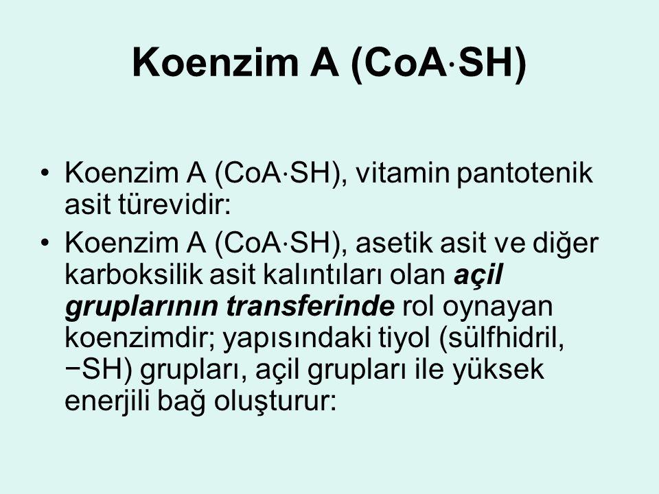 Koenzim A (CoA ⋅ SH) Koenzim A (CoA ⋅ SH), vitamin pantotenik asit türevidir: Koenzim A (CoA ⋅ SH), asetik asit ve diğer karboksilik asit kalıntıları