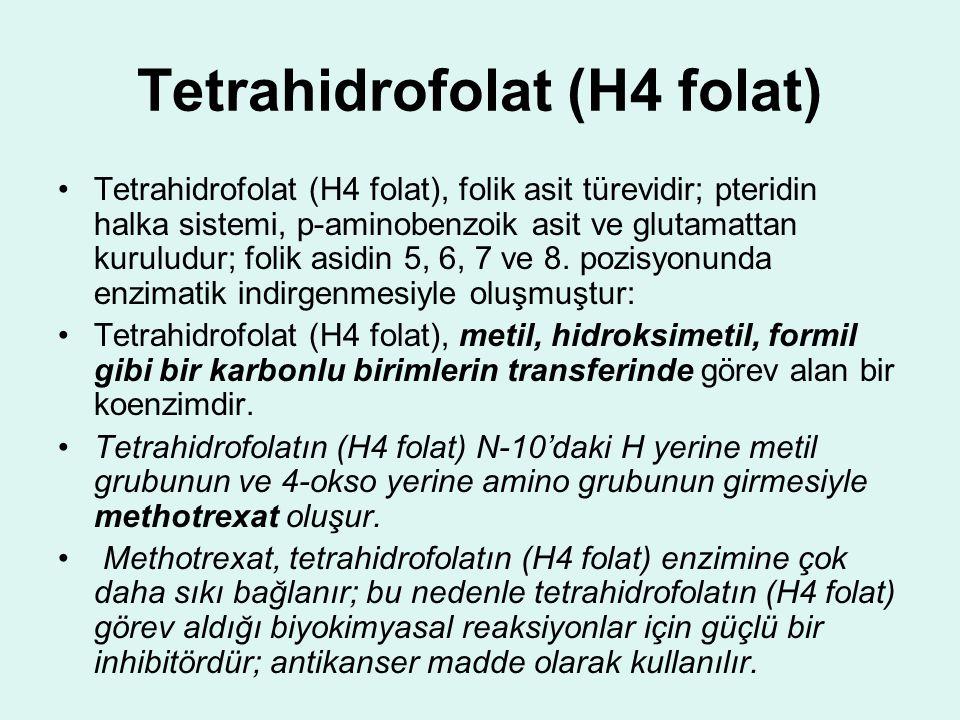 Tetrahidrofolat (H4 folat) Tetrahidrofolat (H4 folat), folik asit türevidir; pteridin halka sistemi, p-aminobenzoik asit ve glutamattan kuruludur; fol