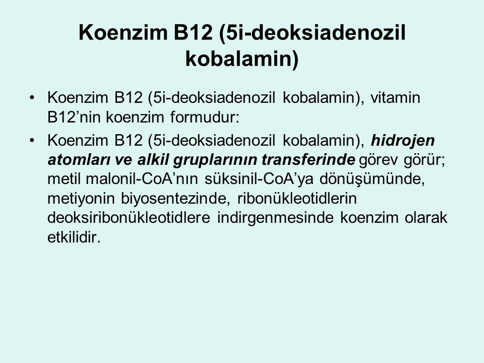 Koenzim B12 (5i-deoksiadenozil kobalamin) Koenzim B12 (5i-deoksiadenozil kobalamin), vitamin B12'nin koenzim formudur: Koenzim B12 (5i-deoksiadenozil