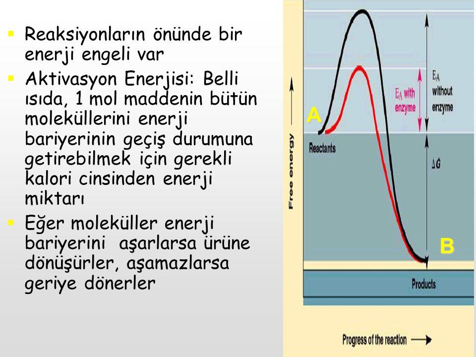  Reaksiyonların önünde bir enerji engeli var  Aktivasyon Enerjisi: Belli ısıda, 1 mol maddenin bütün moleküllerini enerji bariyerinin geçiş durumuna
