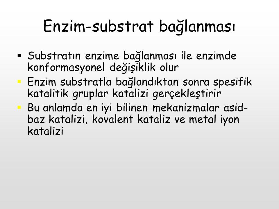 Enzim-substrat bağlanması  Substratın enzime bağlanması ile enzimde konformasyonel değişiklik olur  Enzim substratla bağlandıktan sonra spesifik kat