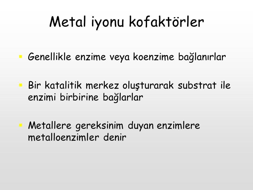 Metal iyonu kofaktörler  Genellikle enzime veya koenzime bağlanırlar  Bir katalitik merkez oluşturarak substrat ile enzimi birbirine bağlarlar  Met