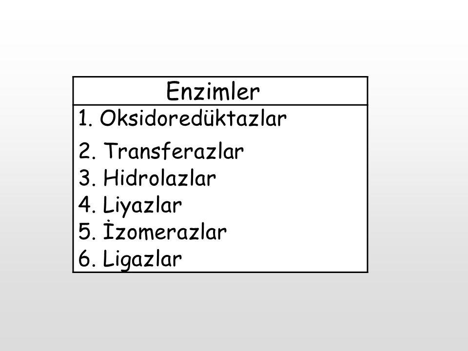 Enzimler 1. Oksidoredüktazlar 2. Transferazlar 3. Hidrolazlar 4. Liyazlar 5. İzomerazlar 6. Ligazlar