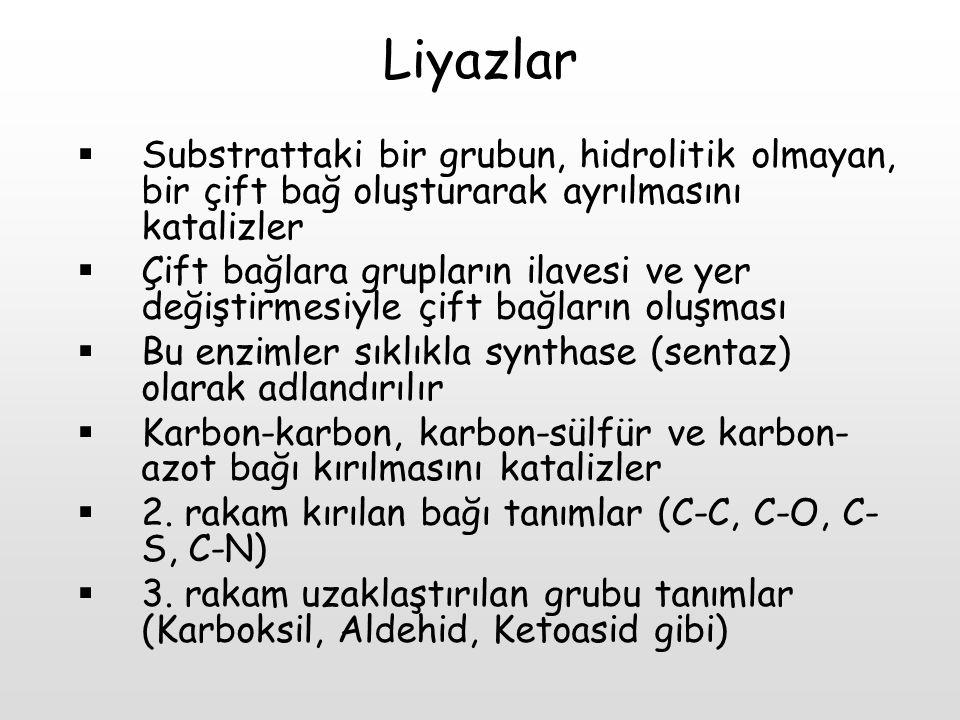Liyazlar  Substrattaki bir grubun, hidrolitik olmayan, bir çift bağ oluşturarak ayrılmasını katalizler  Çift bağlara grupların ilavesi ve yer değişt