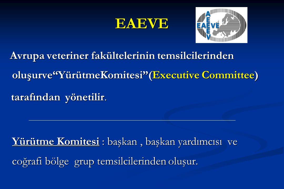 """EAEVE Avrupa veteriner fakültelerinin temsilcilerinden oluşurve""""YürütmeKomitesi""""(Executive Committee) Avrupa veteriner fakültelerinin temsilcilerinden"""