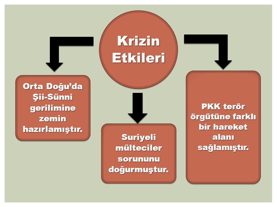  Türkiye, Suriye'deki krizin Tunus, Mısır, Libya ve Yemen deki süreçlerden farklı seyredebileceğini öngörememiş,  Türkiye, krizde sorunun tarafı haline gelmeye başlamıştır.