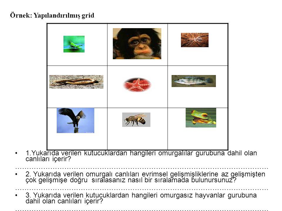 1.Yukarıda verilen kutucuklardan hangileri omurgalılar gurubuna dahil olan canlıları içerir? ……………………………………………………………………………………………… 2. Yukarıda verilen