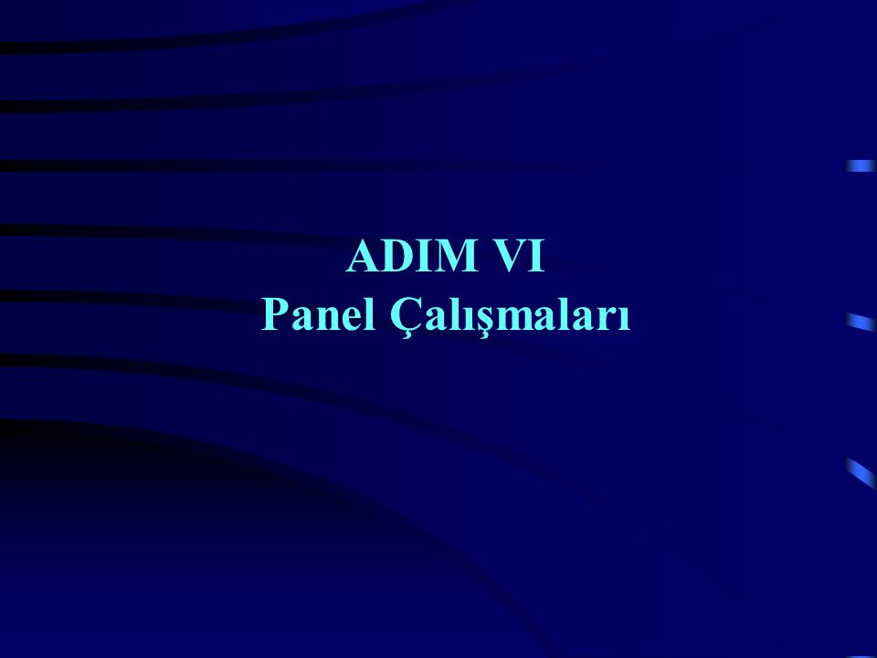 ADIM VI Panel Çalışmaları