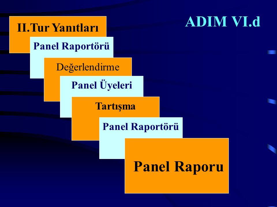 ADIM VI.d II.Tur Yanıtları Panel Raportörü Değerlendirme Panel Üyeleri Tartışma Panel Raportörü Panel Raporu