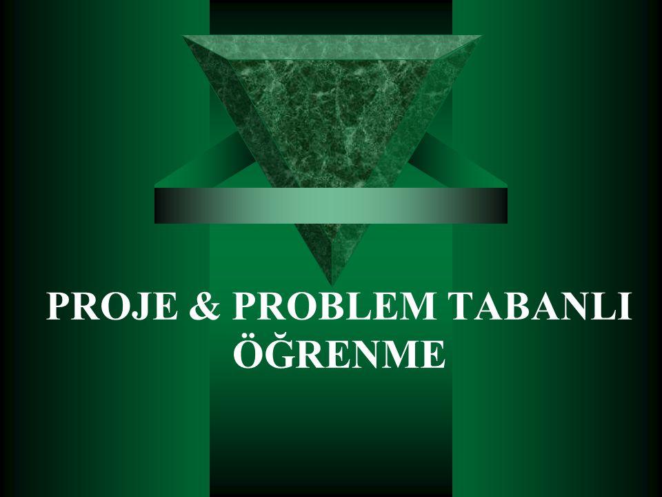 PROJE & PROBLEM TABANLI ÖĞRENME