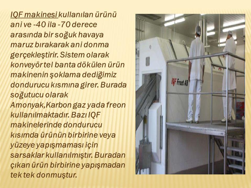 IQF makinesi kullanılan ürünü ani ve -40 ila -70 derece arasında bir soğuk havaya maruz bırakarak ani donma gerçekleştirir. Sistem olarak konveyör tel