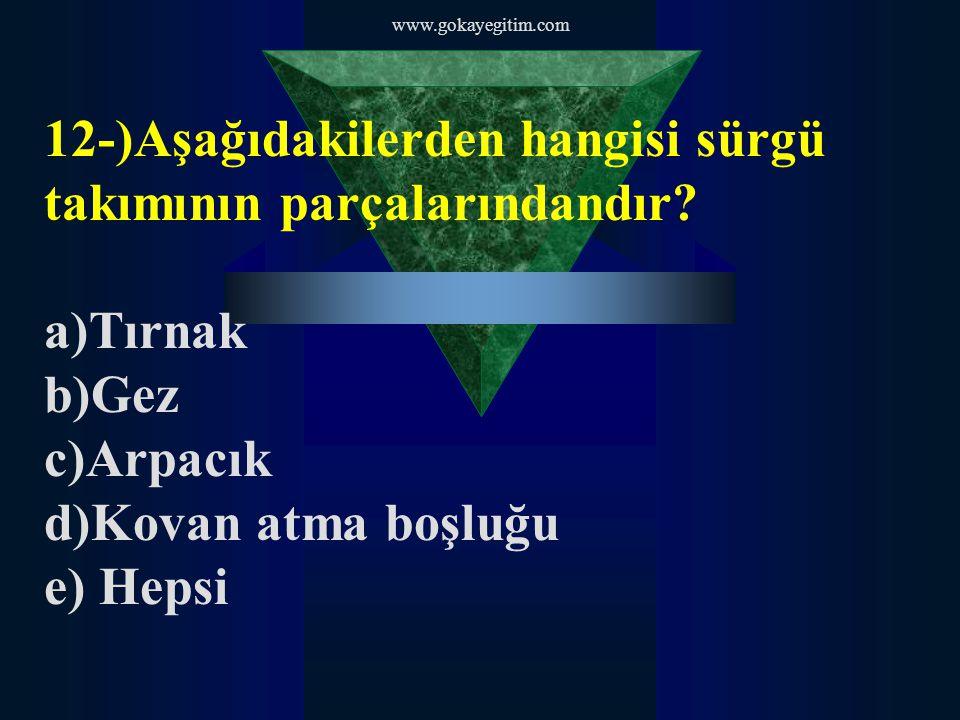 www.gokayegitim.com 12-)Aşağıdakilerden hangisi sürgü takımının parçalarındandır.