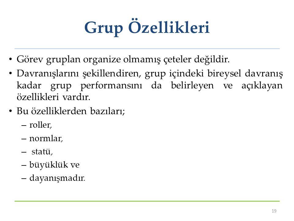 Grup Özellikleri Görev gruplan organize olmamış çeteler değildir. Davranışlarını şekillendiren, grup içindeki bireysel davranış kadar grup performansı