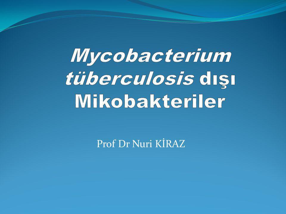 GİRİŞ Mycobacterium tuberculosis kompleks ve M.leprae dışındaki mikobakteriler NTM: Non-tuberculous mycobacteria; MOTT: Mycobacteria other than M.