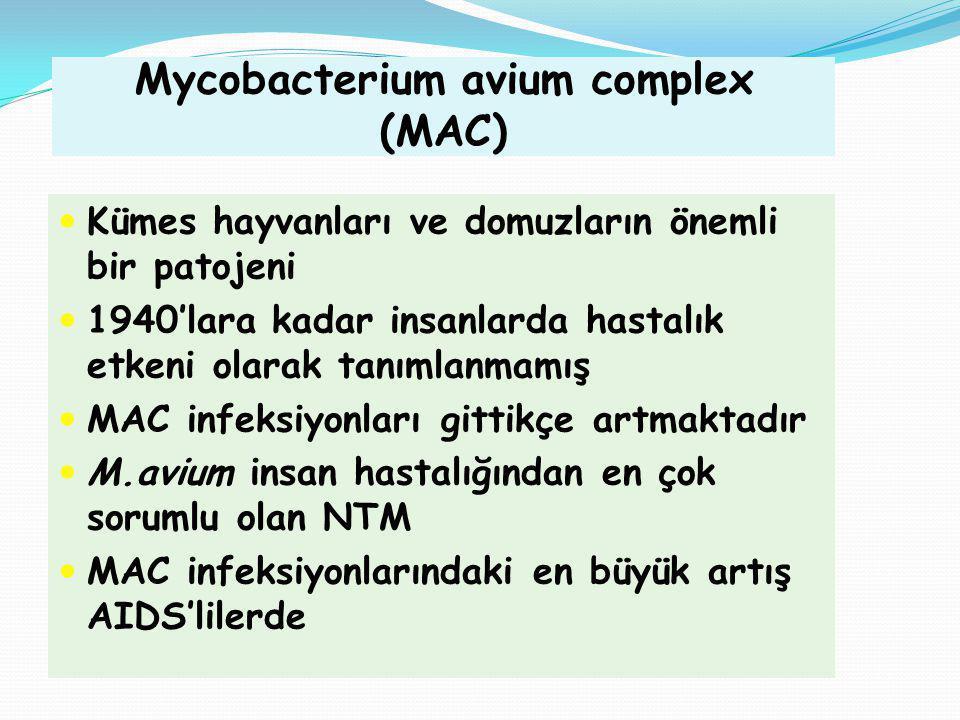 Mycobacterium avium complex (MAC) Kümes hayvanları ve domuzların önemli bir patojeni 1940'lara kadar insanlarda hastalık etkeni olarak tanımlanmamış M