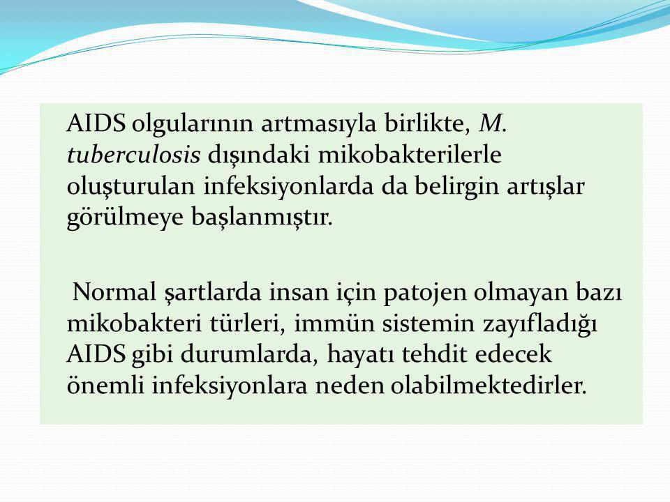 Mycobacterium avium complex (MAC) Kümes hayvanları ve domuzların önemli bir patojeni 1940'lara kadar insanlarda hastalık etkeni olarak tanımlanmamış MAC infeksiyonları gittikçe artmaktadır M.avium insan hastalığından en çok sorumlu olan NTM MAC infeksiyonlarındaki en büyük artış AIDS'lilerde