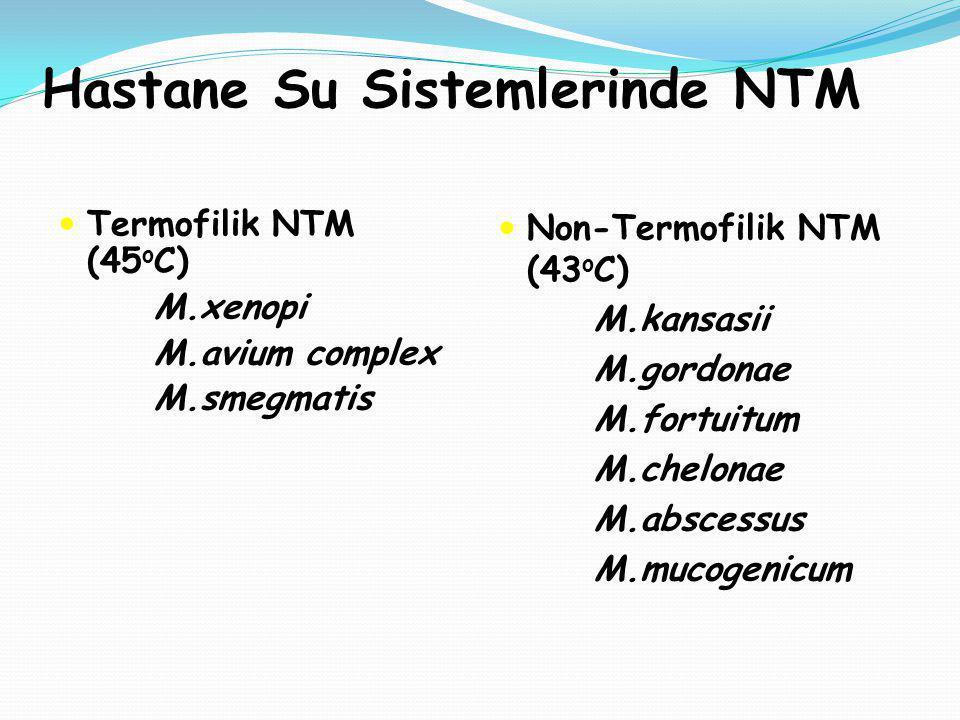 Hastane Su Sistemlerinde NTM Termofilik NTM (45 o C) M.xenopi M.avium complex M.smegmatis Non-Termofilik NTM (43 o C) M.kansasii M.gordonae M.fortuitu