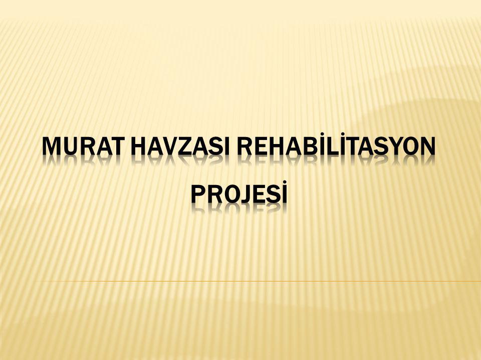 Sektörel ve Bölgesel Arka Plan: Orta gelir düzeyinde bir ülke olarak tanımlanan Türkiye, Birleşmiş Milletler Kalkınma Programı (UNDP)'nin 2009 İnsani Kalkınma Raporunda 182 ülke arasında 79.