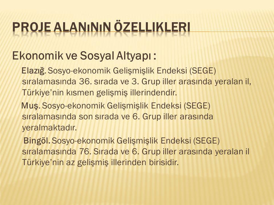 Ekonomik ve Sosyal Altyapı : Elazığ. Sosyo-ekonomik Gelişmişlik Endeksi (SEGE) sıralamasında 36. sırada ve 3. Grup iller arasında yeralan il, Türkiye'