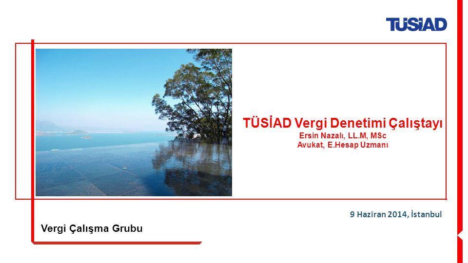 Vergi Çalışma Grubu 9 Haziran 2014, İstanbul TÜSİAD Vergi Denetimi Çalıştayı Ersin Nazalı, LL.M, MSc Avukat, E.Hesap Uzmanı