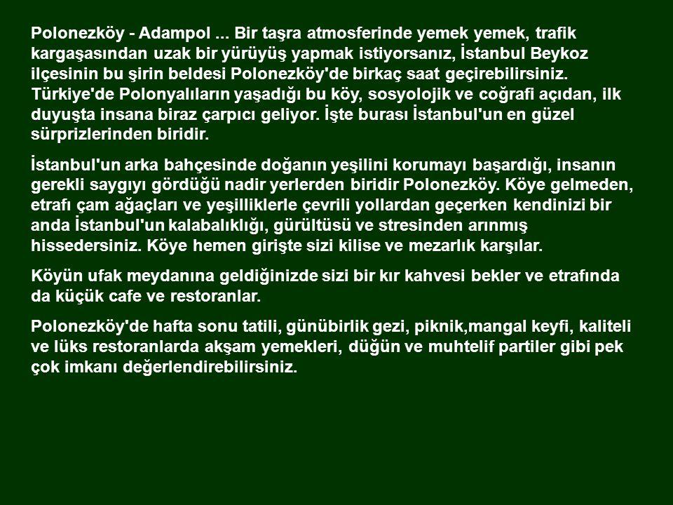 Polonezköy (Adampol) İstanbul'dan 1-5 saat uzaklıkta gürültüden stresten uzakta, yabani kuş sesleri ve yemyeşil bir doğa eşliğinde, doğayı ve kültürü