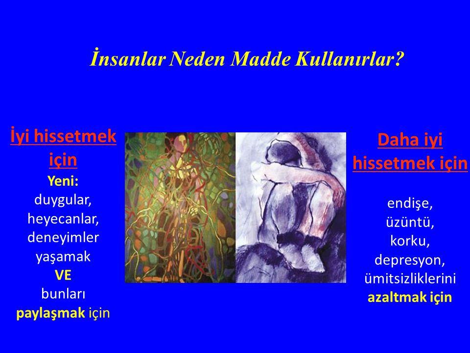 Evsizlik Suç Şiddet Evsizlik Suç Şiddet Neurotoksisite AIDS, Kanser, Ruh hastalıkları Neurotoksisite AIDS, Kanser, Ruh hastalıkları Sağlık harcamaları