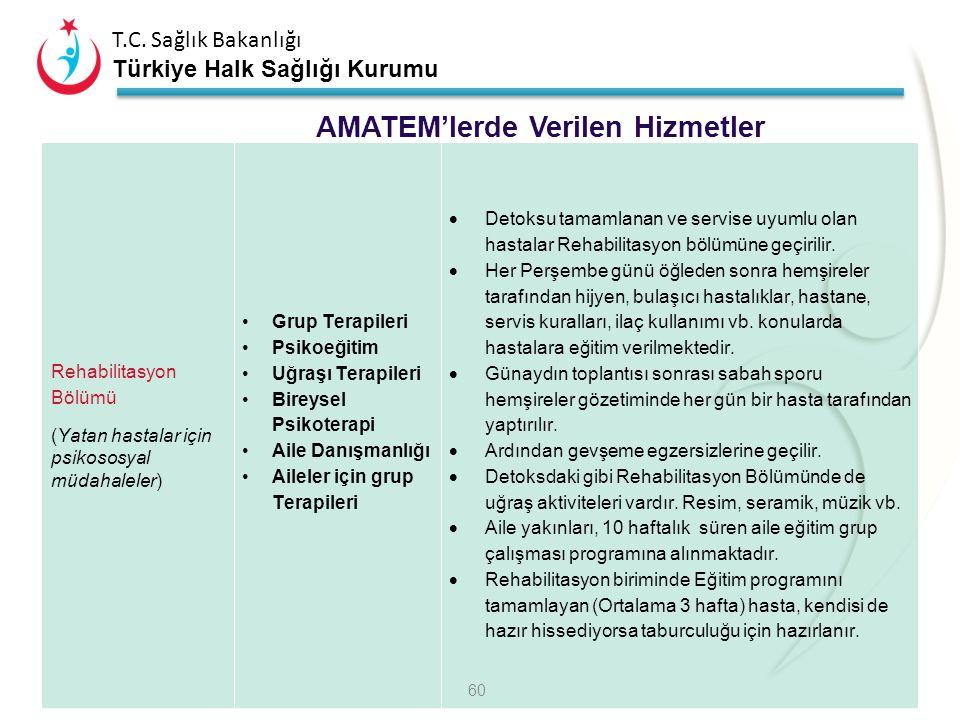 T.C. Sağlık Bakanlığı Türkiye Halk Sağlığı Kurumu Detoksifikasyon Bölümü Detoksifikasyon tedavisi Grup Terapileri Uğraşı Terapileri Bireysel Psikotera