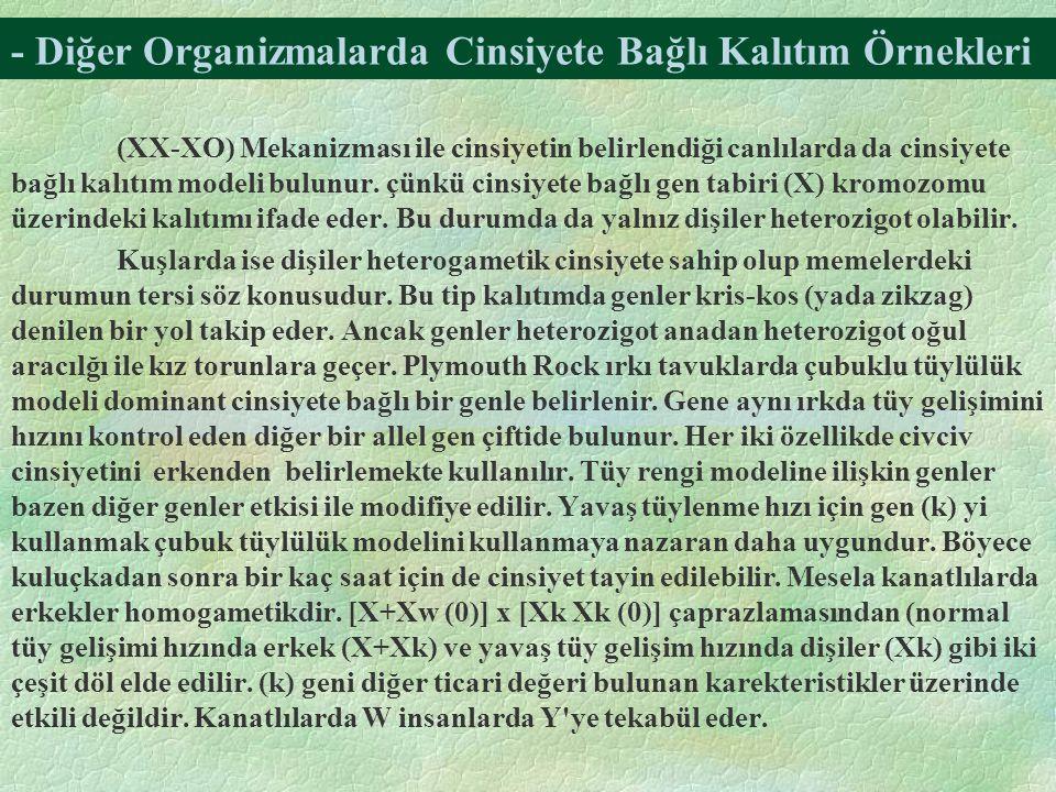 - Diğer Organizmalarda Cinsiyete Bağlı Kalıtım Örnekleri (XX-XO) Mekanizması ile cinsiyetin belirlendiği canlılarda da cinsiyete bağlı kalıtım modeli