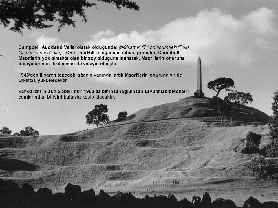 Campbell, Auckland Valisi olarak öldüğünde; (tefrikamın 7. bölümündeki Polis Osman'ın düşü gibi), One Tree Hill e, ağacının dibine gömülür.