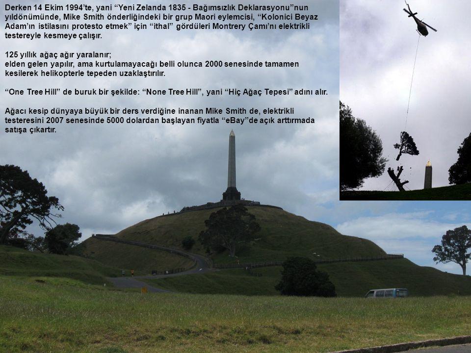 Derken 14 Ekim 1994'te, yani Yeni Zelanda 1835 - Bağımsızlık Deklarasyonu nun yıldönümünde, Mike Smith önderliğindeki bir grup Maori eylemcisi, Kolonici Beyaz Adam'ın istilasını protesto etmek için ithal gördüleri Montrery Çamı'nı elektrikli testereyle kesmeye çalışır.