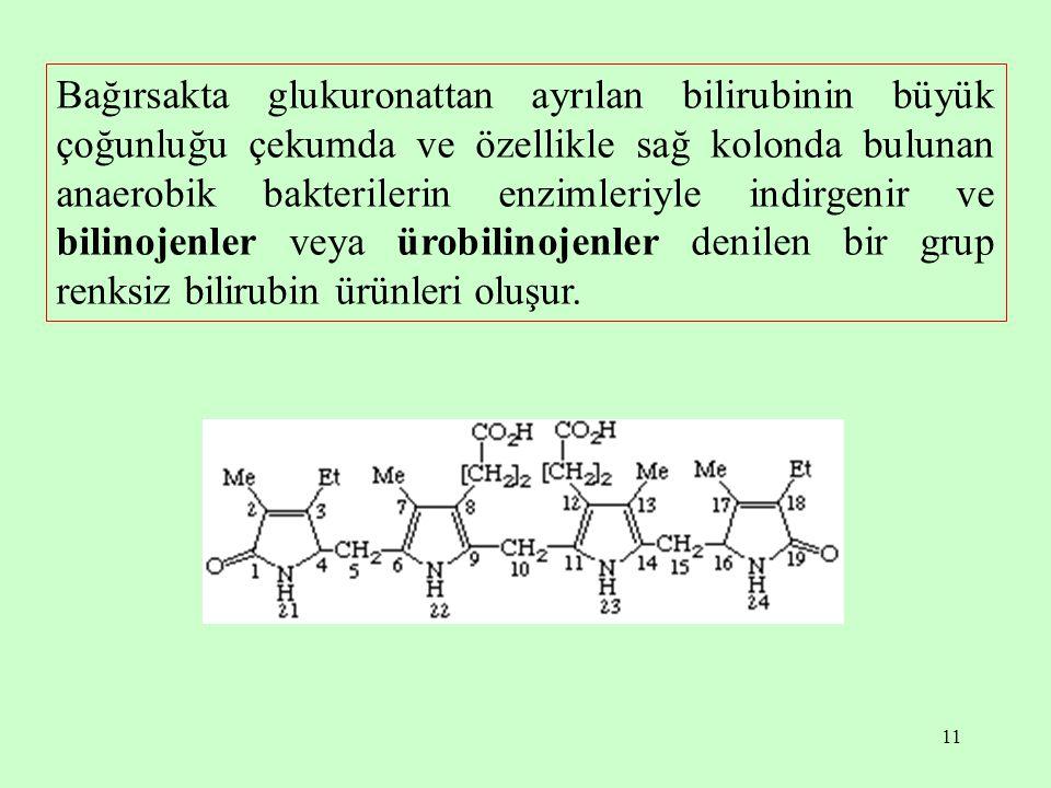 11 Bağırsakta glukuronattan ayrılan bilirubinin büyük çoğunluğu çekumda ve özellikle sağ kolonda bulunan anaerobik bakterilerin enzimleriyle indirgeni