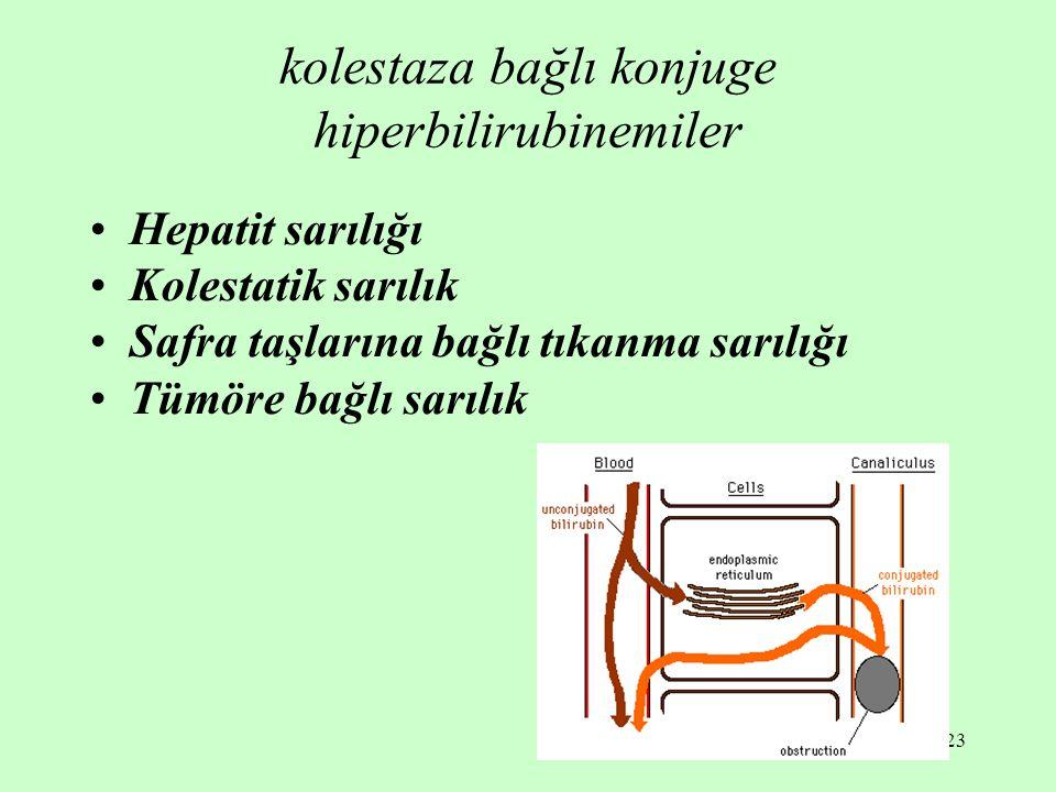 23 kolestaza bağlı konjuge hiperbilirubinemiler Hepatit sarılığı Kolestatik sarılık Safra taşlarına bağlı tıkanma sarılığı Tümöre bağlı sarılık