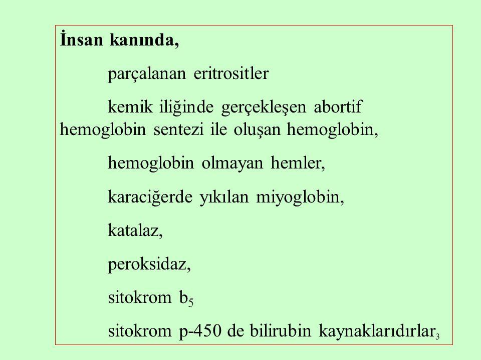 3 İnsan kanında, parçalanan eritrositler kemik iliğinde gerçekleşen abortif hemoglobin sentezi ile oluşan hemoglobin, hemoglobin olmayan hemler, karac