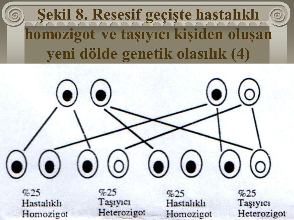 Şekil 8. Resesif geçişte hastalıklı homozigot ve taşıyıcı kişiden oluşan yeni dölde genetik olasılık (4)
