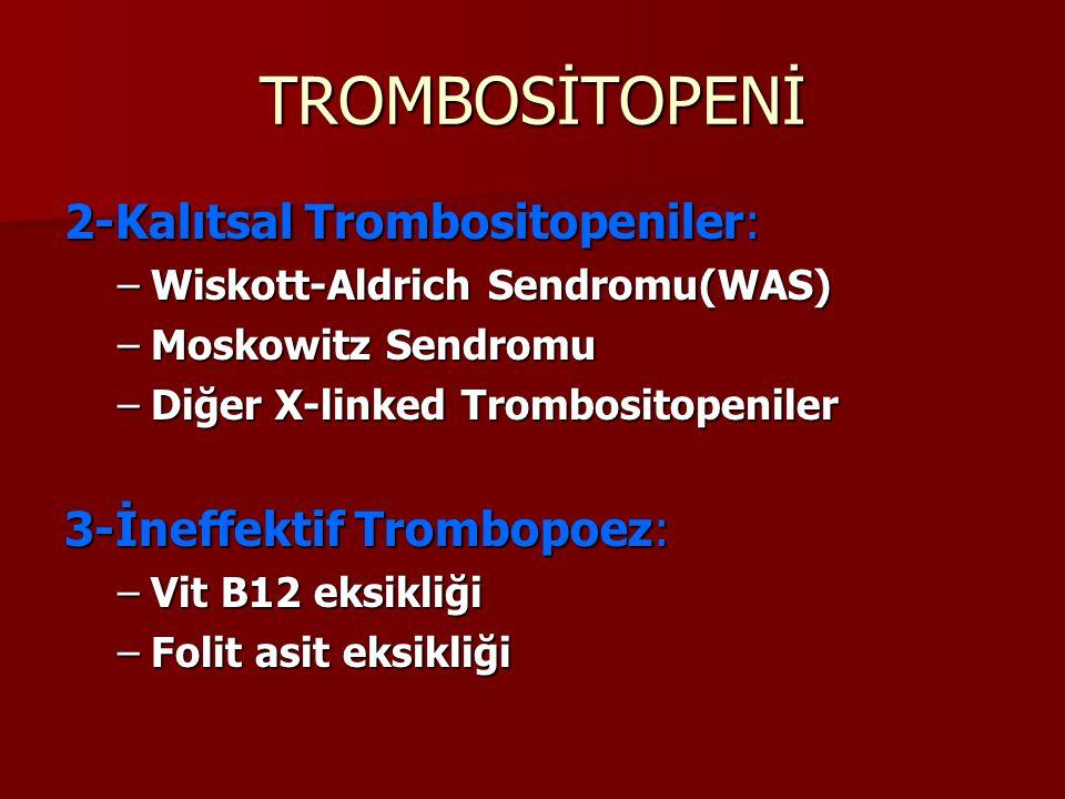 TROMBOSİTOPENİ 2-Kalıtsal Trombositopeniler: –Wiskott-Aldrich Sendromu(WAS) –Moskowitz Sendromu –Diğer X-linked Trombositopeniler 3-İneffektif Trombopoez: –Vit B12 eksikliği –Folit asit eksikliği