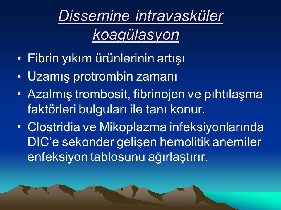Dissemine intravasküler koagülasyon Dissemine intravasküler koagülasyon Fibrin yıkım ürünlerinin artışı Uzamış protrombin zamanı Azalmış trombosit, fibrinojen ve pıhtılaşma faktörleri bulguları ile tanı konur.