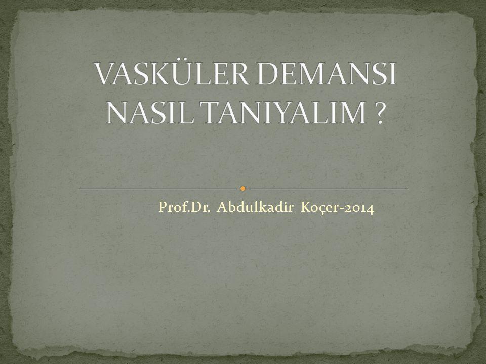 Prof.Dr. Abdulkadir Koçer-2014