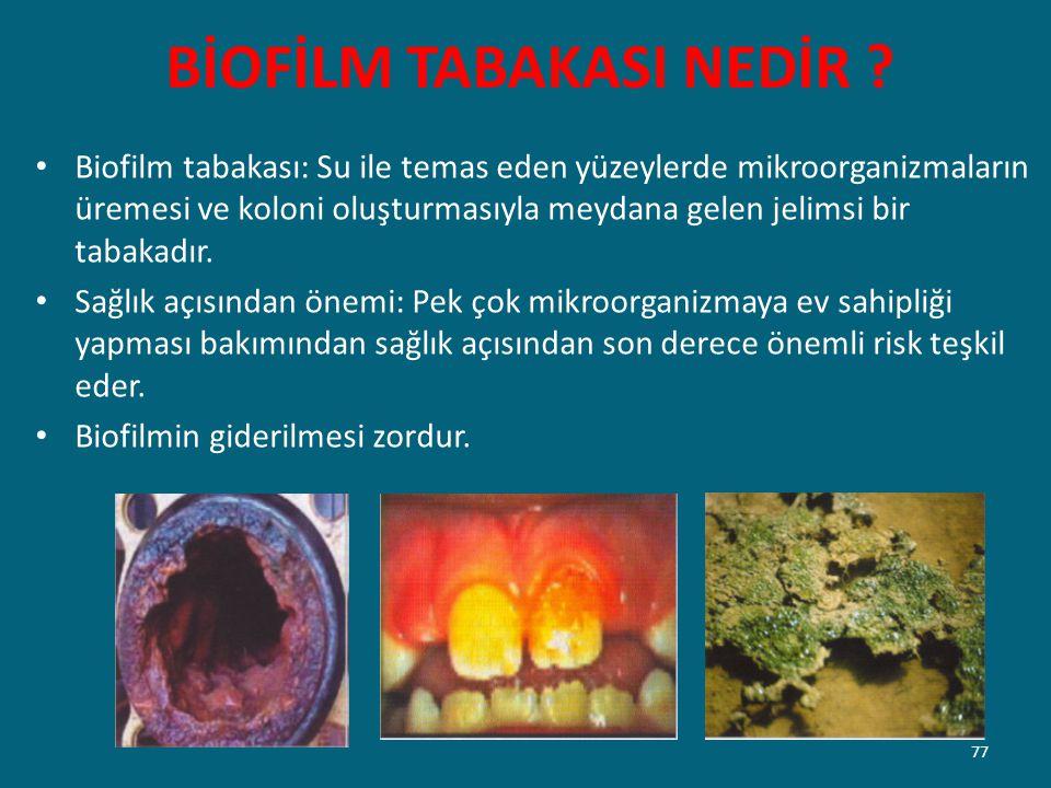 BİOFİLM TABAKASI NEDİR ? Biofilm tabakası: Su ile temas eden yüzeylerde mikroorganizmaların üremesi ve koloni oluşturmasıyla meydana gelen jelimsi bir