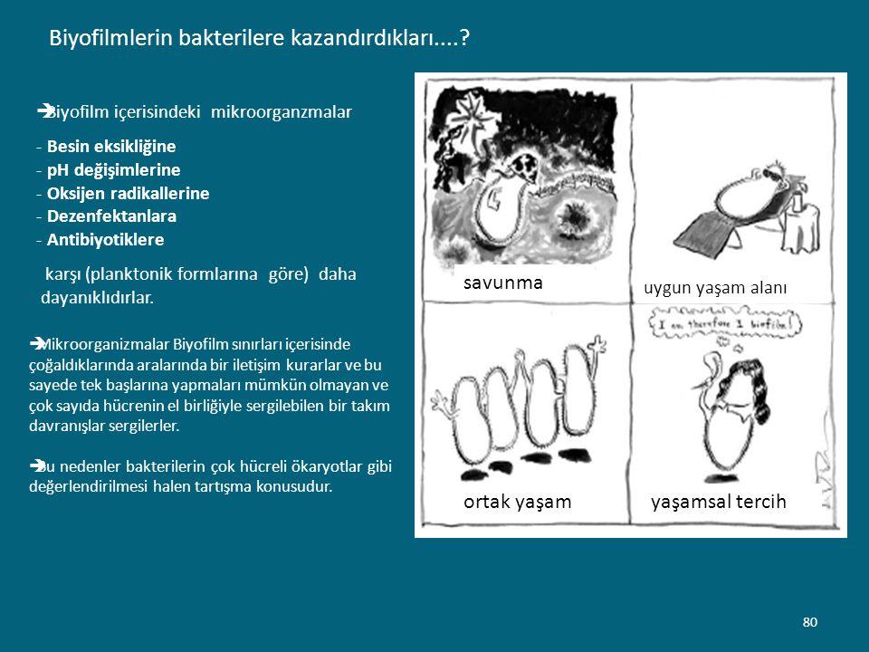 Biyofilmlerin bakterilere kazandırdıkları....?  Biyofilm içerisindeki mikroorganzmalar - Besin eksikliğine - pH değişimlerine - Oksijen radikallerine